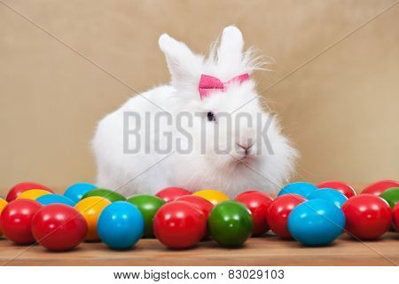 Cute easter bunny sitting among colorful eggs - on golden background- shallow depth of field
