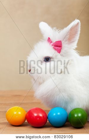 Cute bunny with colorful easter eggs on golden background - shallow depth of field