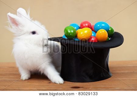 Magical easter with rabbit and colorful eggs in magician hat - on golden background, shallow depth of field