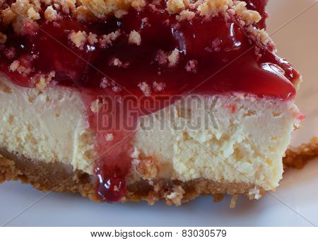 Cheesecake Closeup