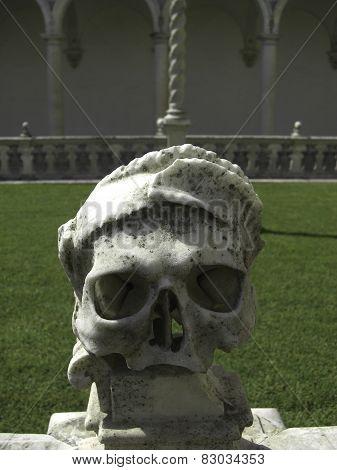 Skull in Certosa