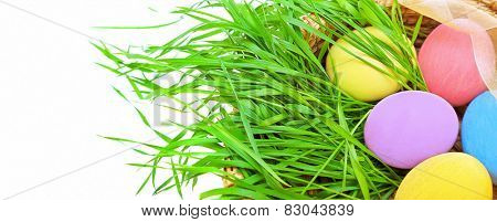 Easter eggs border banner, beautiful colorful eggs lying on fresh green grass in basket on white background, traditional decoration, spring religious holiday celebration