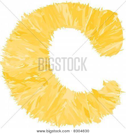 One letter of orange alphabet.