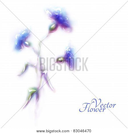 Vector blue cornflower on white background