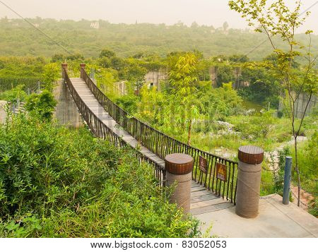 Hanging bridge in nature