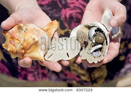 Holding Shells