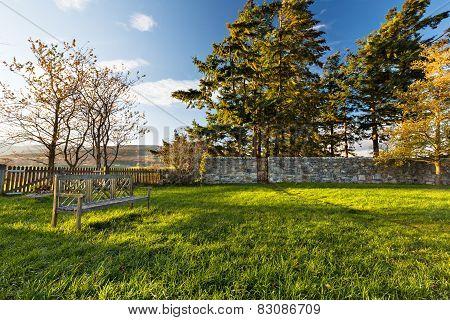 Sunny autumn afternoon in the garden, Scotland