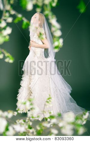 Beautiful young bride has veil over her head and face.