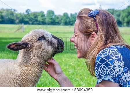 Woman and sheep heads together
