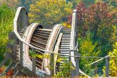 ������, ������: Roller Coaster in the woods