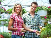 pic of greenhouse  - Gardening people - JPG