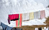 stock photo of clotheslines  - Hanging laundry drying on a clothesline at winter - JPG