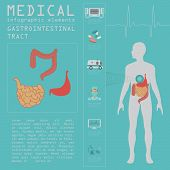 image of gastrointestinal  - Medical and healthcare infographic - JPG