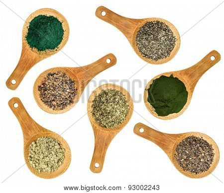 seaweed and algae nutrition supplements (Irish moss, wakame, bladderwrack, wakame, kelp, spirulina,chlorella) - top view of isolated wooden spoons