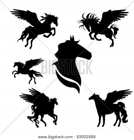 Pegasus set vector