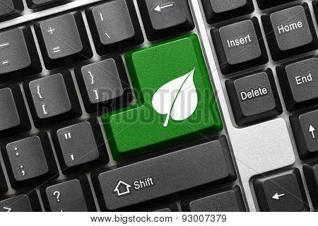 Conceptual Keyboard - Green Key With Leaf Symbol