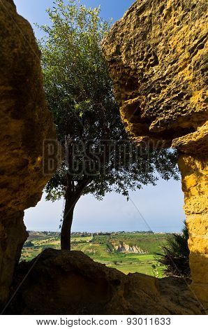 Landscape view from Valley of the Temple, Agrigento, Sicily
