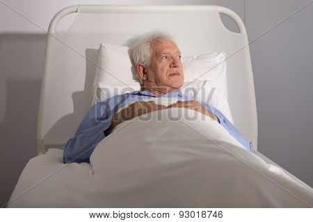 Elderly Patient In Bed