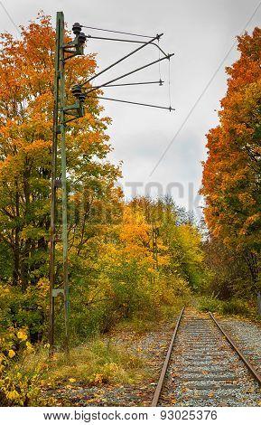 Old railroad tracks in fall.