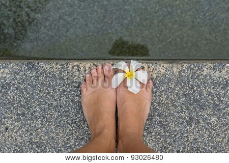 Bared Feet With Flower.