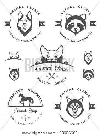 Set Of Vintage Badges For Vet Clinic