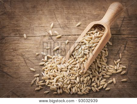 Oat seeds in wooden spoons