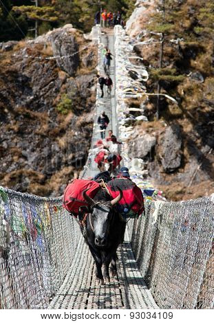 Yaks And People On Hanging Suspension Bridge