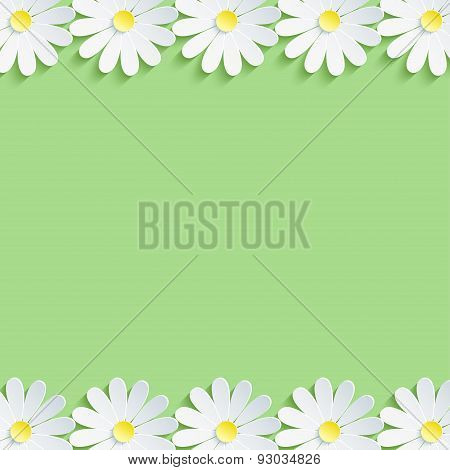Stylish Nature Background With White Chamomiles