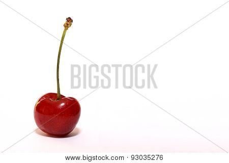 Single Cherry
