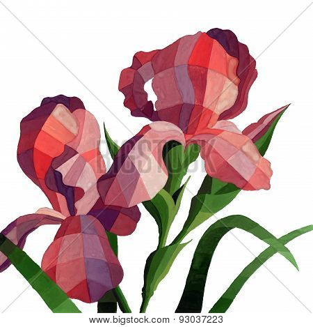 Vector Watercolor Iris Flowers Isolated On White Background. Decorative Red Iris Flower For Your Des