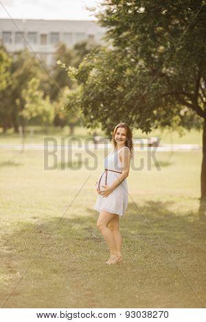 beautiful pregnant woman in nature