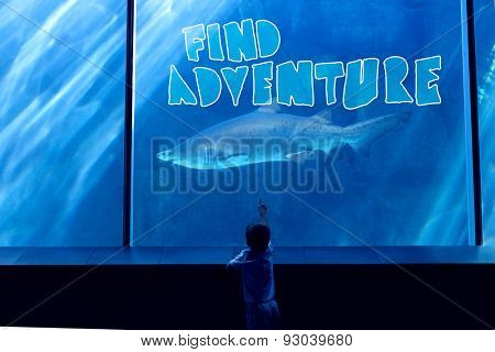 find adventure against little boy looking at fish tank