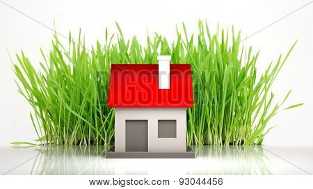House model with grass  isolated on white background