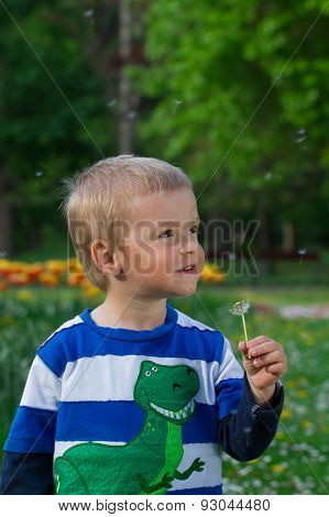 Little Boy With Dandelion.