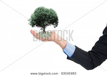 Close up of businessman with empty hand open against tree with green leaves growing