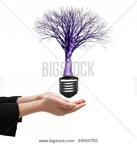 Businesswomans hands presenting against empty light bulb