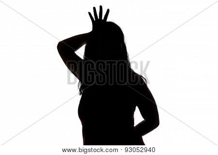 Photo of woman's silhouette showing princess