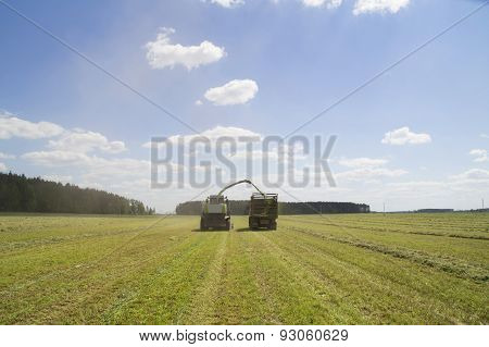 Haying for fodder modern combine