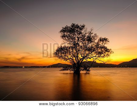 Seascape During Sunset. Klong Mudong, Phuket Thailand