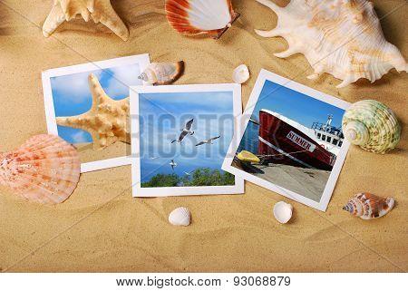 Summer Holidays Photos Lying On The Beach