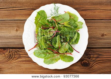 Salad Of Fress Chard With Dill In White Plate Oiled