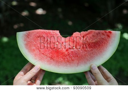 Hands holding watermelon with green background