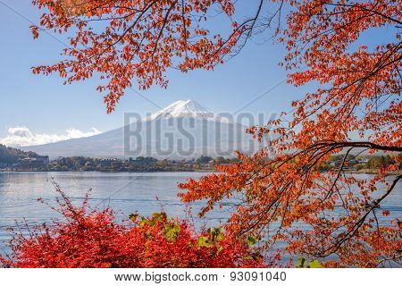 Mt. Fuji, Japan at Lake Kawaguchi during the autumn season.