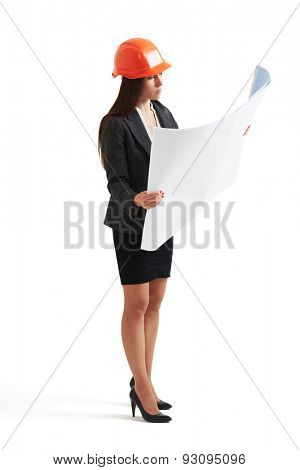 serious woman architect in orange hardhat looking at plan. isolated on white background