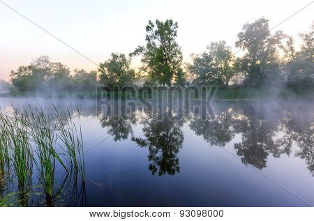 Morning scene on river with fog