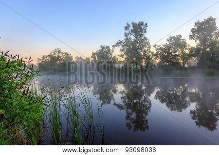 Nice early morning scene on lake