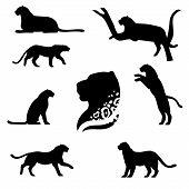 stock photo of animal silhouette  - Leopard set of black silhouettes - JPG