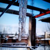 picture of icicle  - icicle winter clear photo water  ice cold - JPG