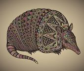 foto of armadillo  - Armadillo hand drawn vector illustration with a lot of details and colors - JPG