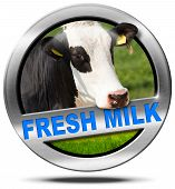 picture of cow head  - Metallic round icon or symbol with head of cow and text fresh milk - JPG
